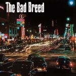 DSL 010 The Bad Breed LP 10""