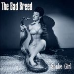 DSL 017 The Bad Breed